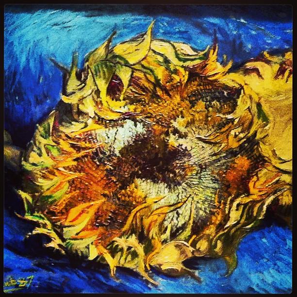 Van Goghs Sunflower